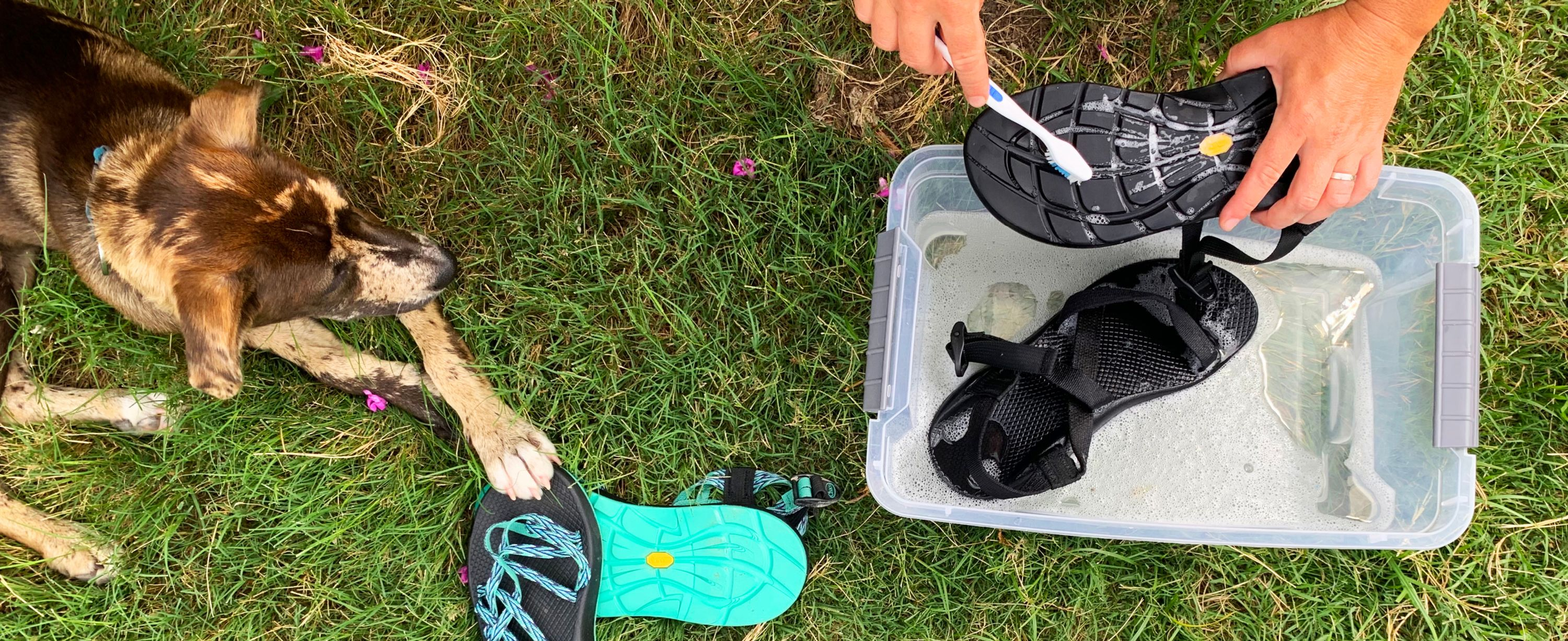 Cleaning your chacos