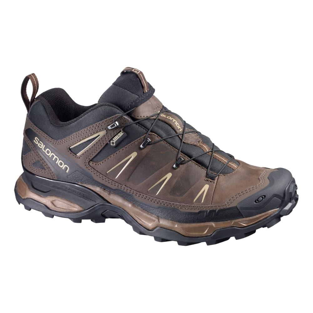 Salomon Men's X Ultra LTR GTX Shoes BROWNX