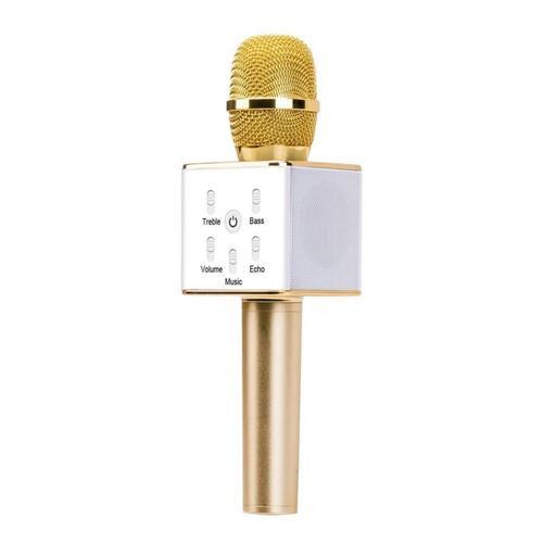 Funky Rico Karaoke Microphone