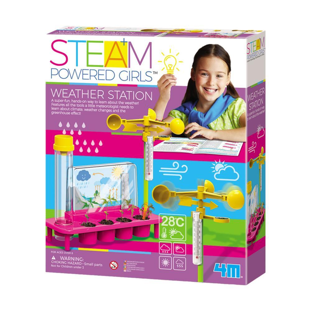 4m Steam Weather Station