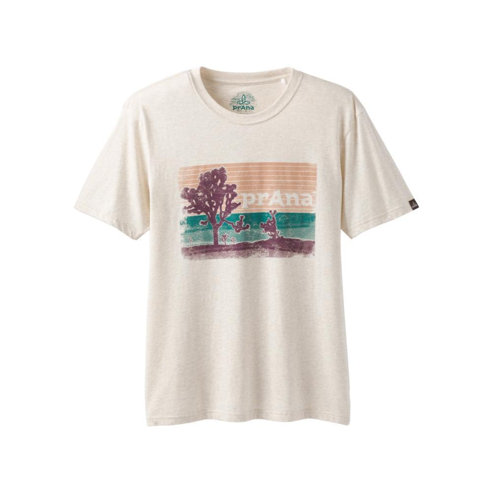 prAna Men's Aggler T-Shirt WEATHERBHTH