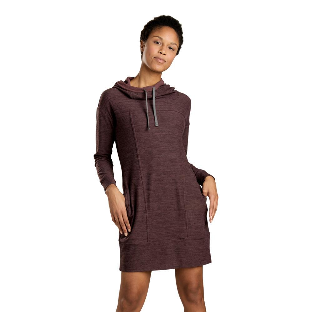 Toad&Co Women's Intermosso Hooded Dress HUCKLEBERRY