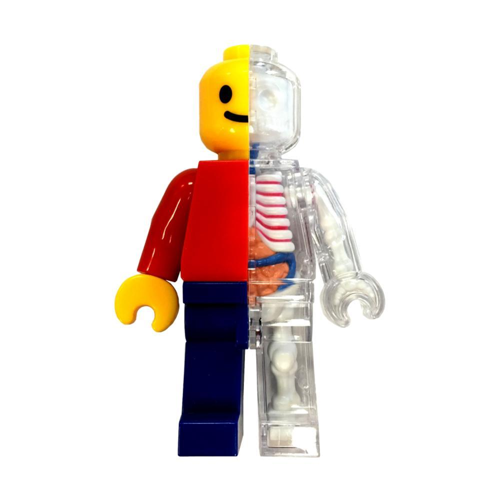4d Master Brick Man Anatomy Model