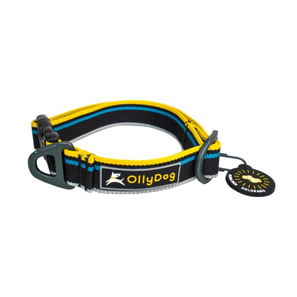 OllyDog Urban Trail Reflective Collar - Anthracite - Small ANTHRACITE