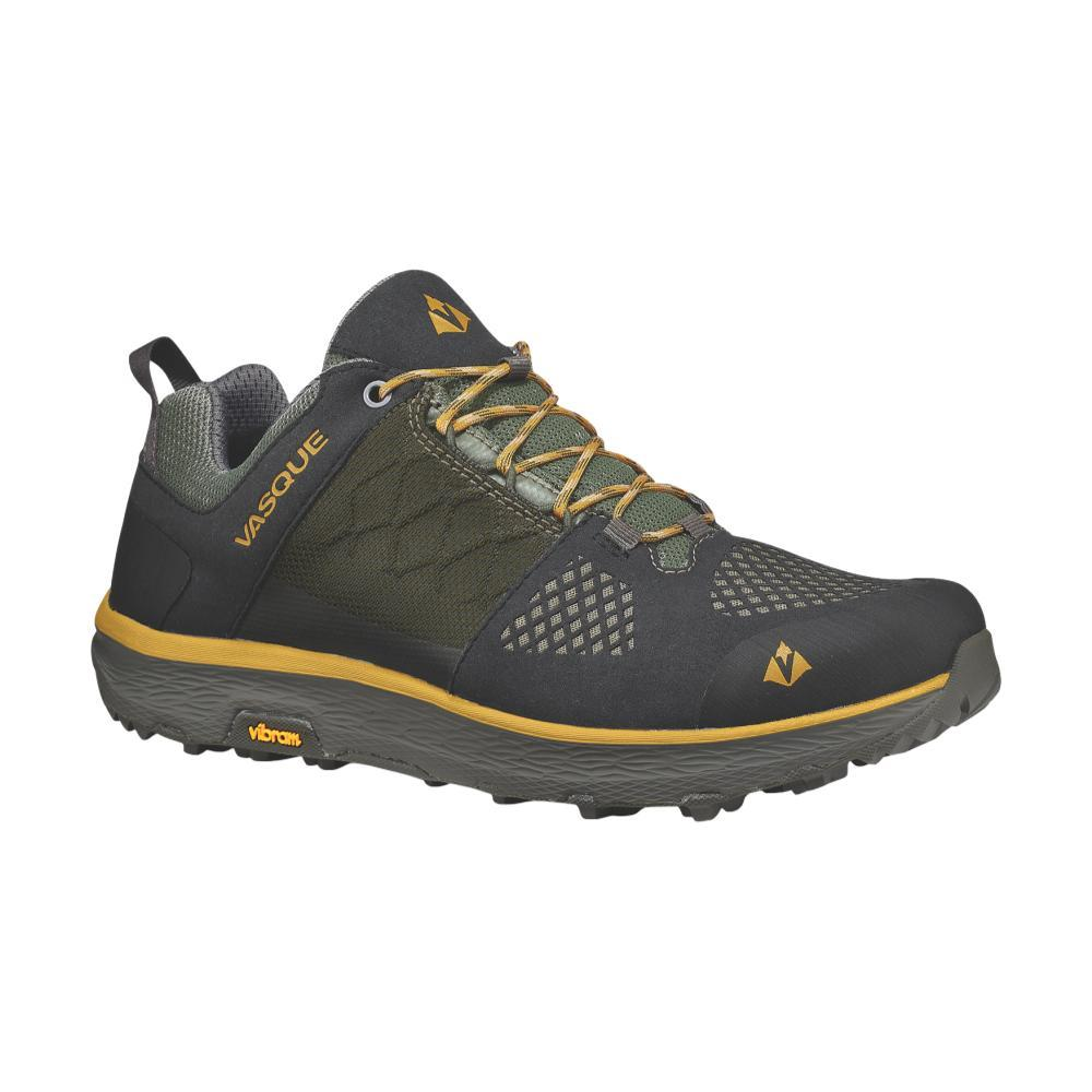 Vasque Men's Breeze LT Low GTX Hiking Shoes BELUG.TWNOLV